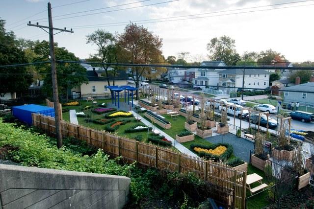 50 Cent Community Garden