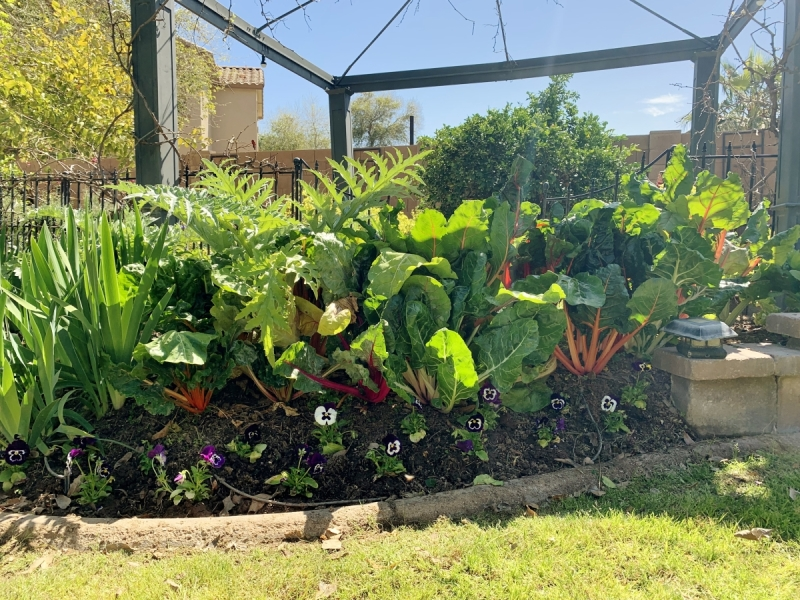 Agriscaping News | Agriscaping